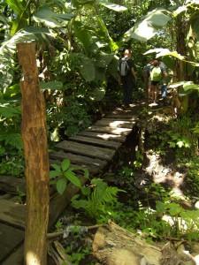 Botanical Garden in Nicaragua